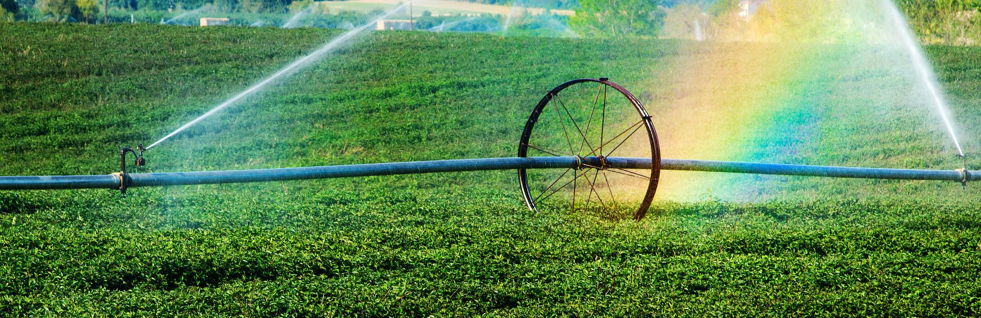 Mangueras para la industria alimentaria, agricultura, ganaderia